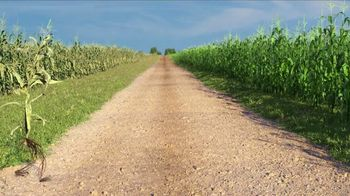 Syngenta Miravis Neo TV Spot, 'Corn'