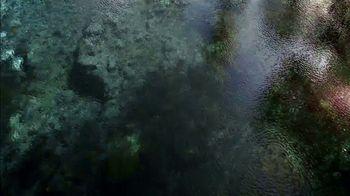 Nestle Waters TV Spot, 'Laine: Florida Springs' - Thumbnail 3