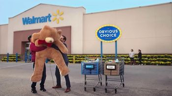 Walmart TV Spot, 'Obvious Choice: Apples and Mini Muffins' - Thumbnail 10