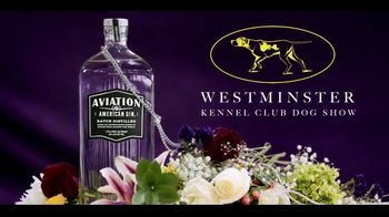 Aviation American Gin TV Spot, 'Best in Show' Featuring Ryan Reynolds - Thumbnail 10