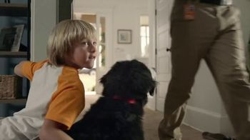 The Home Depot TV Spot, 'Filled With Memories: Official Carpet of the Westminster Kennel Club' - Thumbnail 6