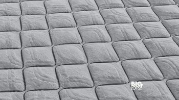 Big Lots TV Spot, 'Sealy Mattress Collection: Queen Mattress' - Thumbnail 2