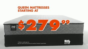 Big Lots TV Spot, 'Sealy Mattress Collection: Queen Mattress' - Thumbnail 4