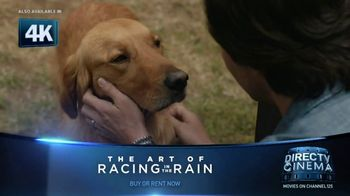 The Art of Racing In The Rain thumbnail