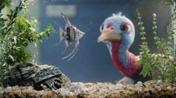 Chantix TV Spot, 'It's Time to Quit Slow Turkey' - Thumbnail 6