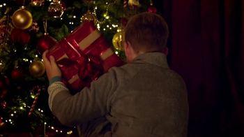 Temptations Cat Treats TV Spot, 'Holidays: All It Takes Is a Shake' - Thumbnail 4