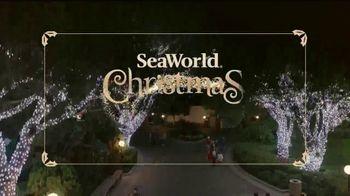 SeaWorld Christmas Celebration TV Spot, '2020 Fun Card' - Thumbnail 6