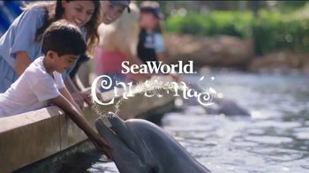 SeaWorld Christmas Celebration TV Spot, '2020 Fun Card' - Thumbnail 1