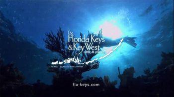 The Florida Keys & Key West TV Spot, 'Diving: Beyond Your Imagination' - Thumbnail 7