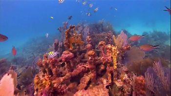 The Florida Keys & Key West TV Spot, 'Diving: Beyond Your Imagination' - Thumbnail 5