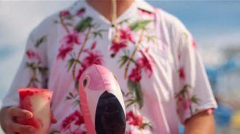 Carnival TV Spot, 'Full Flamingo: $285' Song by The Keys - Thumbnail 5