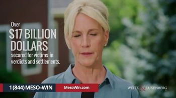 Weitz and Luxenberg TV Spot, 'So Many Firms' Featuring Erin Brockovich - Thumbnail 10