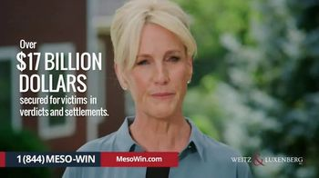 Weitz and Luxenberg TV Spot, 'So Many Firms' Featuring Erin Brockovich - Thumbnail 9