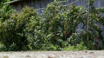 Mahindra TV Spot, 'DIY Network: Transform Unused Landscapes' - Thumbnail 6