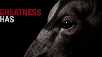 Purina TV Spot, 'Greatness'
