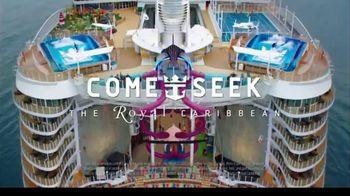 Royal Caribbean Cruise Lines TV Spot, 'Road Less Traveled: $499' - Thumbnail 8