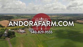 Andora Farm TV Spot, 'Cattle Drives' - Thumbnail 9
