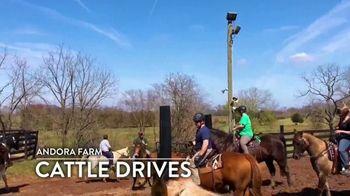 Andora Farm TV Spot, 'Cattle Drives' - Thumbnail 6