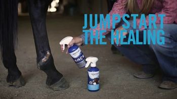 Vetericyn Animal Wellness TV Spot, 'Healing and Protecting' - Thumbnail 6