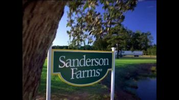 Sanderson Farms TV Spot, 'Happy Holidays'
