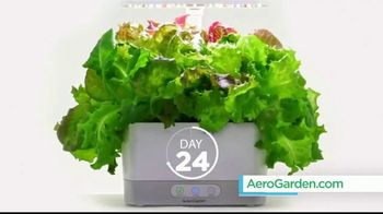 AeroGarden TV Spot, 'What Fresh Looks Like' - Thumbnail 5