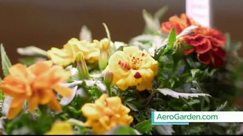 AeroGarden TV Spot, 'What Fresh Looks Like' - Thumbnail 7