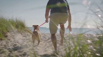 PETCO Foundation TV Spot, 'Adopt a Love' - Thumbnail 1