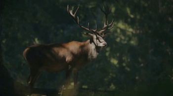 Deer Park TV Spot, 'Partnership to Support the American Park Network' - Thumbnail 8