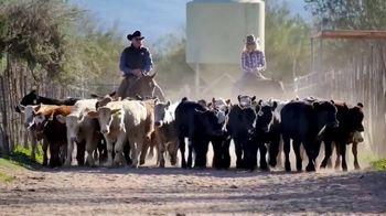 Mason Morse Ranch Company TV Spot, 'We Live It to Know It: Ron Van Pelt' - Thumbnail 6
