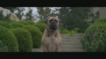 2019 Audi A4 TV Spot, 'Winchester' [T1] - Thumbnail 5