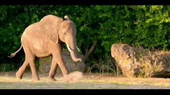 Disney's Animal Kingdom TV Spot, 'My Disney Day: Ellie' - Thumbnail 9