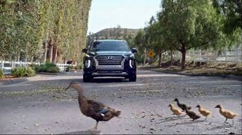 Hyundai Spring Sales Event TV Spot, 'Duck Crossing' [T2] - 70 commercial airings