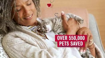 Bobs From SKECHERS TV Spot, 'Pets Saved' - Thumbnail 9