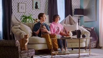 GEICO TV Spot, 'Animal Planet: Modern Catemporary' - Thumbnail 3