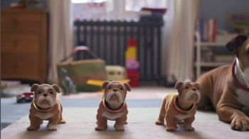 Heartgard Plus TV Spot, 'Any Dog at Any Time'