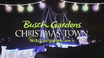 Busch Gardens Christmas Town TV Spot, 'Traditions Tree Maze and Finnegan's Flyer: $34.99' - Thumbnail 9