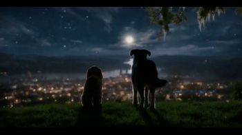 Disney+ TV Spot, 'Lady and the Tramp' - Thumbnail 4