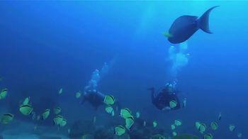 Belize Dive Haven TV Spot, 'Welcome'