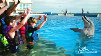 Apple Vacations Super Sale TV Spot, 'Take You There: RIU Hotels & Resorts' - Thumbnail 8