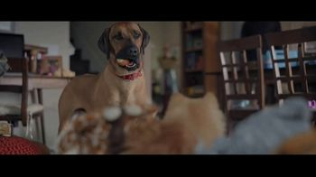 Wells Fargo TV Spot, 'Lulu and Lobo Need a Bigger Place' - Thumbnail 7