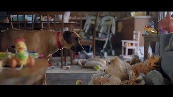 Wells Fargo TV Spot, 'Lulu and Lobo Need a Bigger Place' - Thumbnail 8