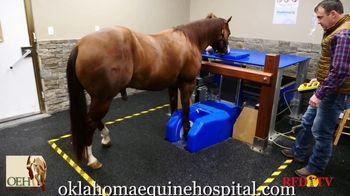 Oklahoma Equine Hospital TV Spot, 'Standing MRI'