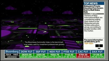 Bloomberg Commodity Index TV Spot, 'True Diversification' - Thumbnail 8