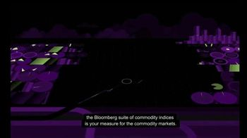 Bloomberg Commodity Indices TV Spot, 'Diversity Your Portfolios' - Thumbnail 10