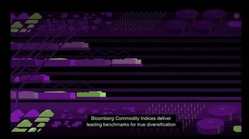 Bloomberg Commodity Indices TV Spot, 'Diversity Your Portfolios' - Thumbnail 4
