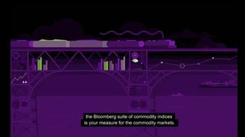 Bloomberg Commodity Indices TV Spot, 'Diversity Your Portfolios' - Thumbnail 9