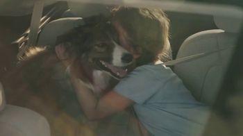 2020 Volvo XC90 TV Spot, 'A Dog's Journey' [T2] - Thumbnail 7