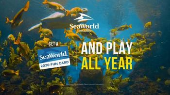 SeaWorld 2020 Fun Card TV Spot, 'Real Feels Amazing: 2020 Fun Card'