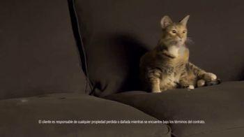 Rent-A-Center TV Spot, '¡Dile adiós a los muebles viejos y compra de 150 estilos!' [Spanish]