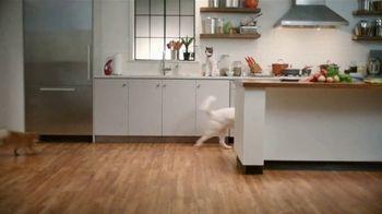 Rachael Ray Nutrish TV Spot, 'Test Kitchen' Featuring Rachael Ray - Thumbnail 2